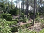 A manicured garden somewhere in Pico...