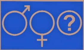 gender image 2