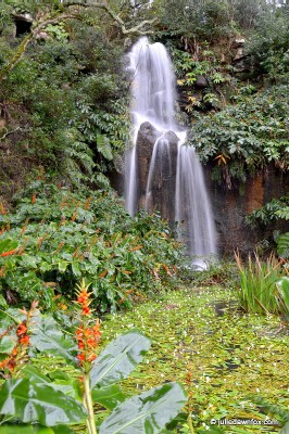 Beckfords waterfall, Monserrate gardens, Sintra