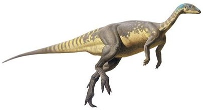 """""""Eousdryosaurus nanohallucis"""", the smallest dinosaurs species found in Portugal."""