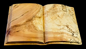 """Book with many stories"". Wood sculpture by João Martins."