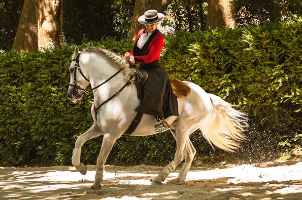 Cavaleira Ana Batista in Caldas da Rainha.