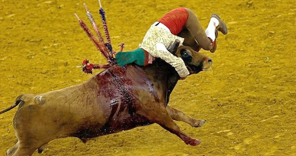 STOP! Children being exposed to bullfight violence - By Len